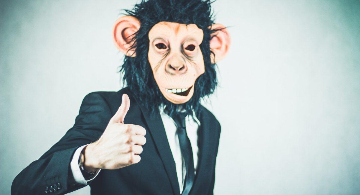 monkey-2710658_1920
